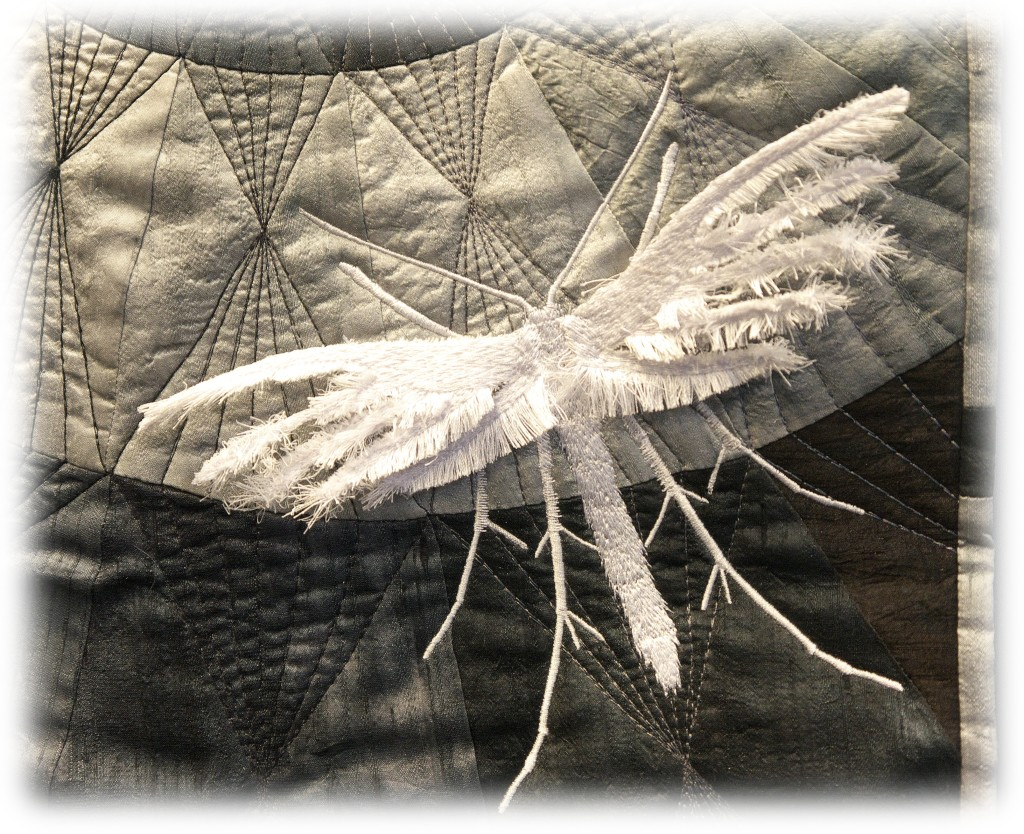 barbara-lange-monochrom-18-feather-moth-detail-01